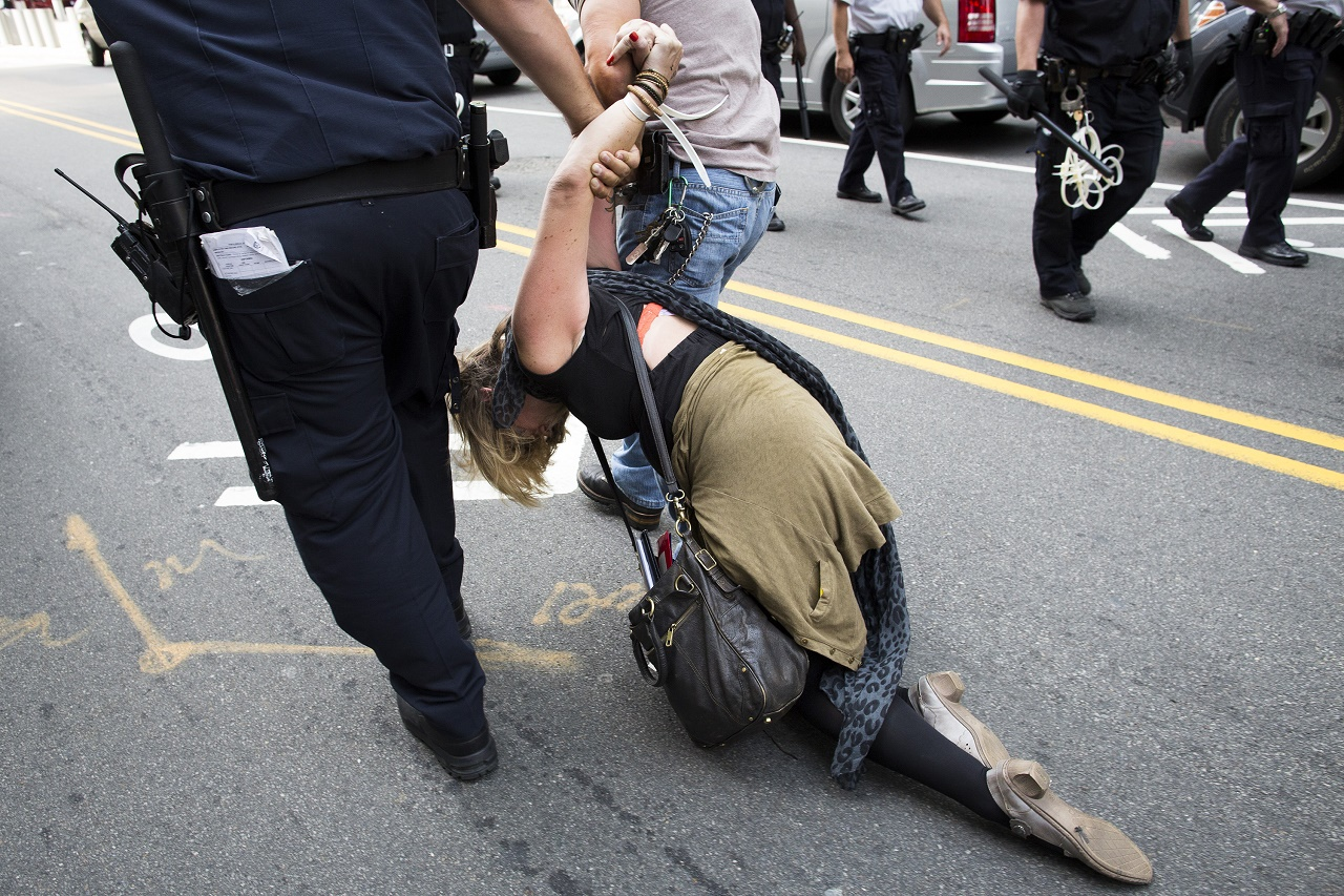 an introduction to the issue of police brutality in the united states
