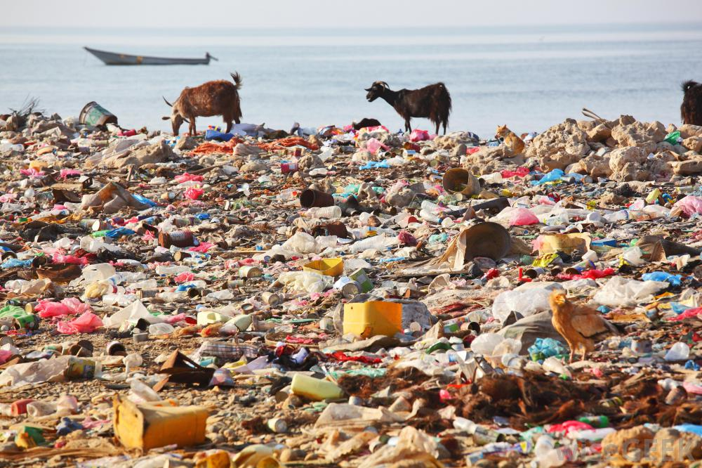environmental degradation pollution The literature on the many anthropogenic factors and causes of environmental pollution and degradation is very voluminous our treatment of these factors (in contrast to natural ones) will.