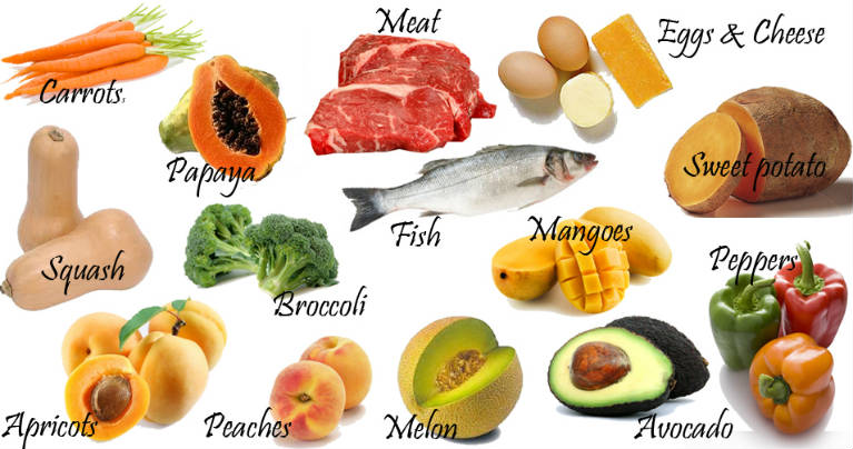 Food Sources Found In The New World