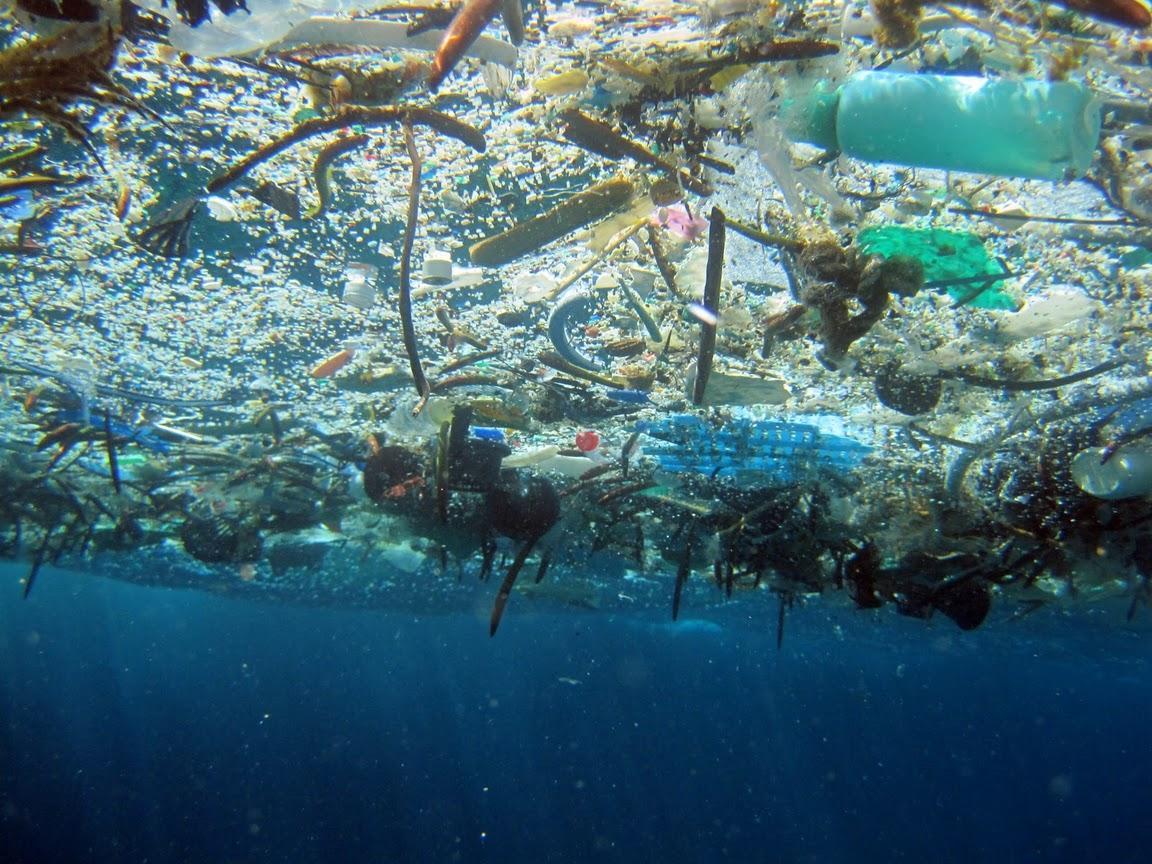 всего загрязнение мирового океана пластиком осень зима увольнении