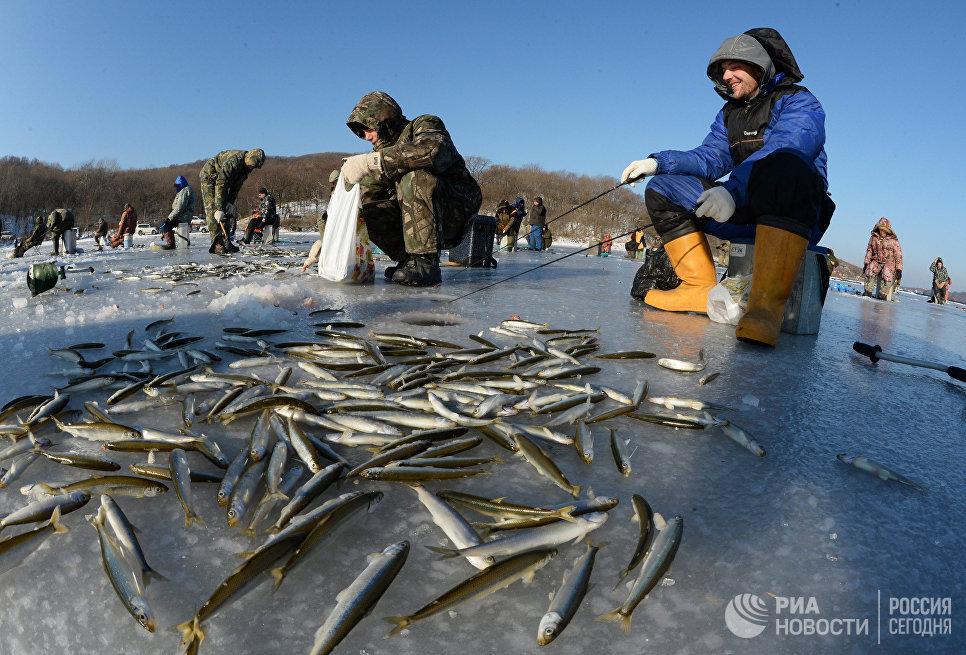 рыбалка в приморском крае владивосток