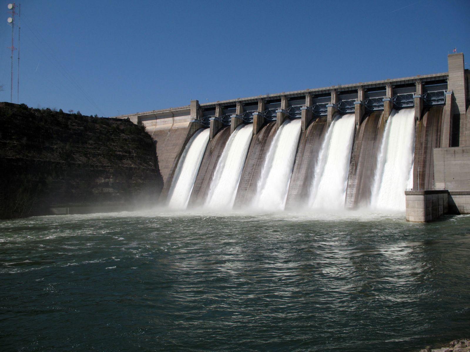 Картинки по запросу WWF: гидроэнергетика может быть опасной для природы и людей