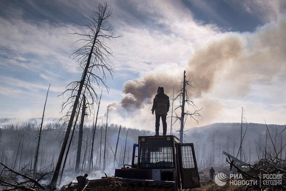 """Сотрудники """"Авиалесоохраны"""" тушат природный лесной пожар в Кабанском районе Бурятии."""