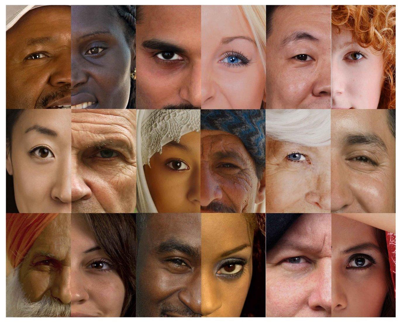 subculture vs multiculturalism