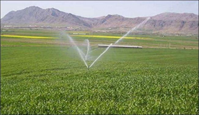 ايران تنفذ نحو 4 الاف مشروع زراعي سنويا ادى الى رفع حجم الانتاج الى 4 اضعاف